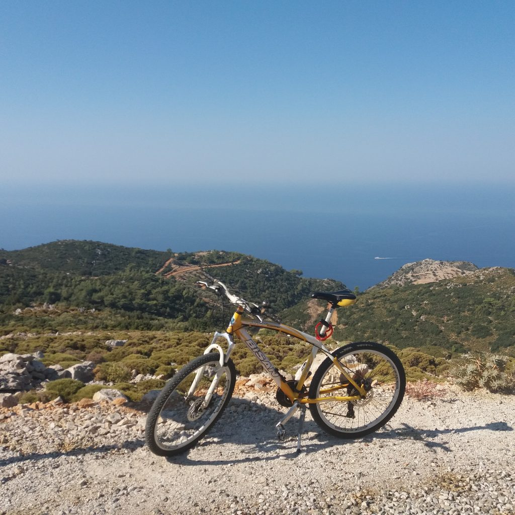 Picture of mountain bike with sea view