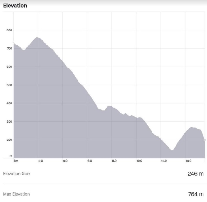 Cycling in Turkey graph